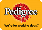 Business Brand Creation Expert - Pedigree